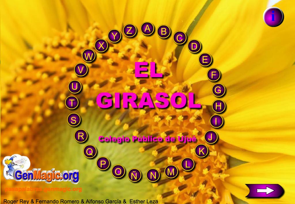 rosco_girasol